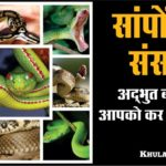Snake world Interesting facts about snakes in hindi