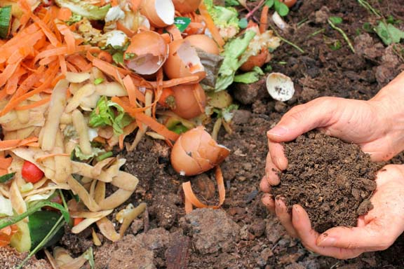 Image result for compost khad