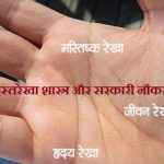 palmistry-about-goverment-job
