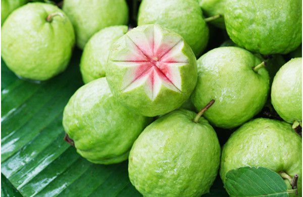 benefits of guava for helath in hindi