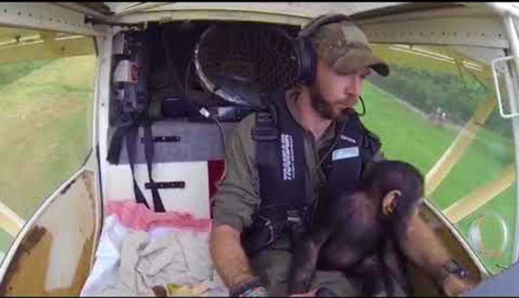 monkey in helicopter