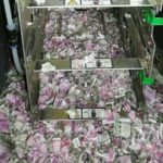 Rats Reportedly Destroy Rs 12 Lakh At Assam ATM