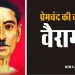 hindi story by munshi premchand Vairagy