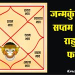 Rahu in Seventh House in Hindi
